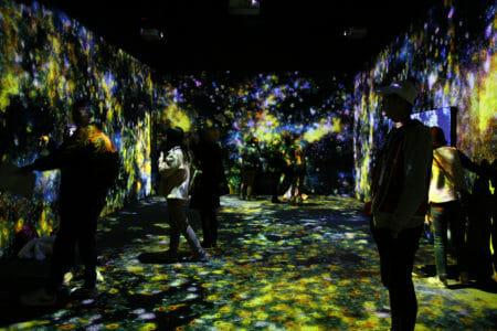 teamlab exhibition